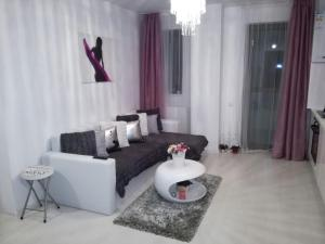 White Luxury Apartment, Apartmány  Sibiu - big - 25
