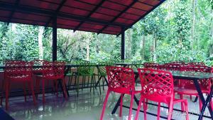 Namma Chikmagaluru NC-GSH, Privatzimmer  Attigundi - big - 45