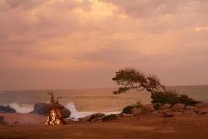 Wild Coast Tented Lodge (15 of 55)
