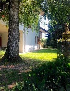 obrázek - Golden House