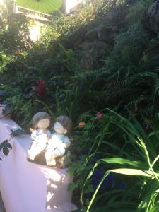 Chez Dolores, Bed & Breakfast  Le Bois de Nèfles - big - 12