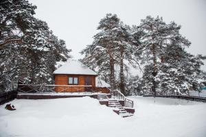 Baza otdykha Sosny, Holiday parks  Kaluga - big - 43