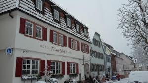 Hotel Mainblick Garni - Esselbach