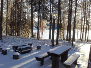 Ollilan Lomamajat, Dovolenkové domy  Kuusamo - big - 38