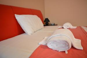 Guest Accommodation Zak, Affittacamere  Novi Sad - big - 5