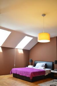 Guest Accommodation Zak, Affittacamere  Novi Sad - big - 8