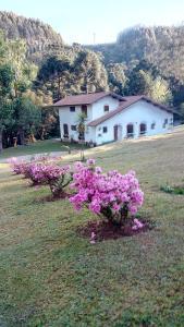 obrázek - Casa Do Sol Nascente