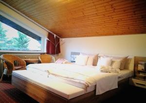 Feldberg Hotels