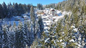 Forest Glade - Hotel - Pamporovo
