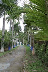 Club Campestre Las Palmas Girardot, Hotel  Girardot - big - 20