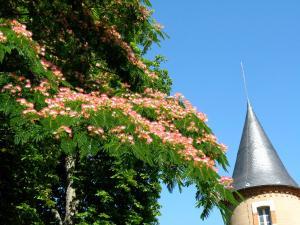 Domaine du Bourg Gites - Moulins