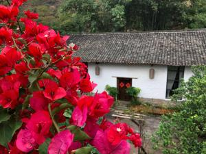 Zen Box House, Pensionen  Yangshuo - big - 9