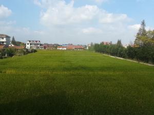 Xiangcun Village Ji Jia Garden, Villák  Sanghaj - big - 6
