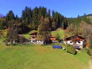 Farnreit - Apartment - Brixen im Thale