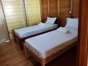 亞馬遜金龍魚小屋旅館