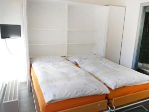 Apartment Rosablanche C12, Ferienwohnungen  Siviez - big - 12