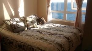 Departamentos Playa Bellavista tome, Apartments  Tomé - big - 13