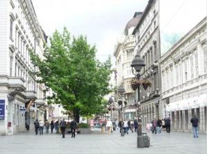 Apartment in the city center, Apartments  Belgrade - big - 19