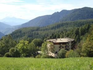 Hotel Waldheim - AbcAlberghi.com