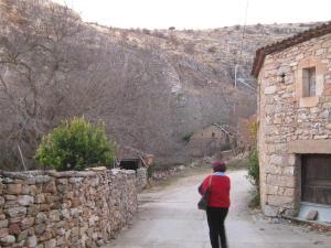 Casa Rural Patiño, Vidiecke domy  Quintanas de Gormaz - big - 11