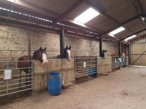 Hay Farm House, Bed & Breakfast  Ford - big - 23