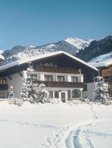 Haus Alpina by Châtel Reizen - Accommodation - Großarl