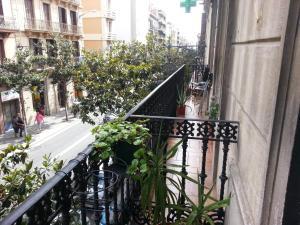 Residencia Universitaria San Marius- Gracia
