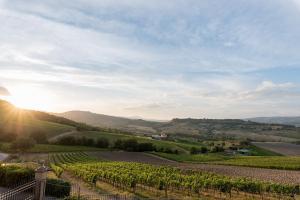 Altarocca Wine Resort (20 of 114)