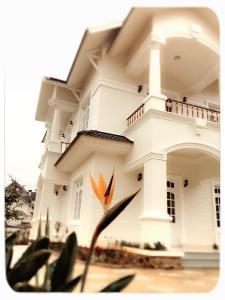 Tam An Villa