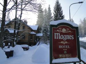 Hotel Magnes