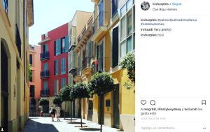 Can Blau Homes Turismo de Interior, Ferienwohnungen  Palma de Mallorca - big - 101