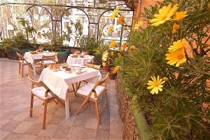 Hotel Carmel - Rome