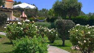 Villa Mirothea Alonissos, Villák  Alóniszosz óvárosa - big - 26
