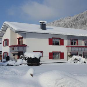 Appartements Gästehaus Monika - Apartment - Bezau