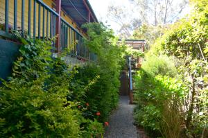 No.14 Hostel, Hostely  Katoomba - big - 37