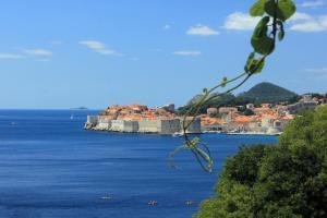 Studio Dubrovnik 9077a, Appartamenti  Dubrovnik - big - 5