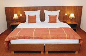 Vis Vitalis Hotel, Hotels  Kerepes - big - 11