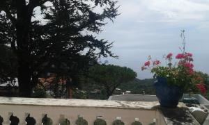 obrázek - Villa Adriana