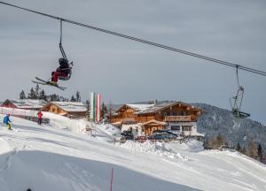 Alpine-Lodge - Hotel - Schladming