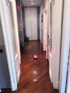 Affittasi Appartamenti Sara - AbcAlberghi.com