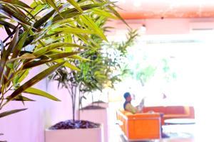 Hotel Alpha Makassar, Hotely  Makasar - big - 57