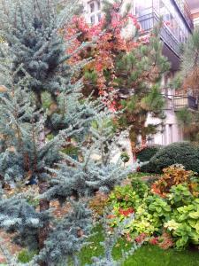 Green and Blue Garden Apartments, Apartmanok  Belgrád - big - 24