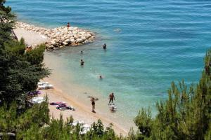 Apartments and rooms by the sea Podgora Makarska 11894