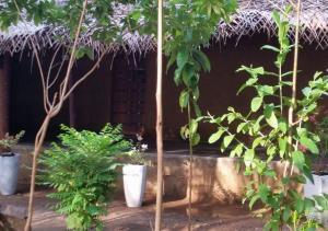 Mereiyans vil Eco Cottage, Villas  Wawinna - big - 12