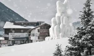 Hotel Bergland - Cadipietra / Steinhaus