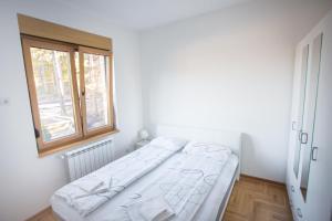 Apartment Lana & Mario, Apartments  Zlatibor - big - 12