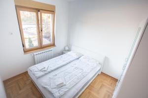 Apartment Lana & Mario, Apartments  Zlatibor - big - 10