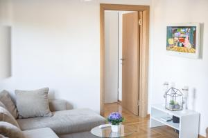 Apartment Lana & Mario, Apartments  Zlatibor - big - 2