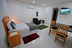 Villa Guiseppe, Appartamenti  Asunción - big - 7