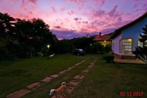 Canto da Lala Chales, Penziony  Pouso Alto - big - 61